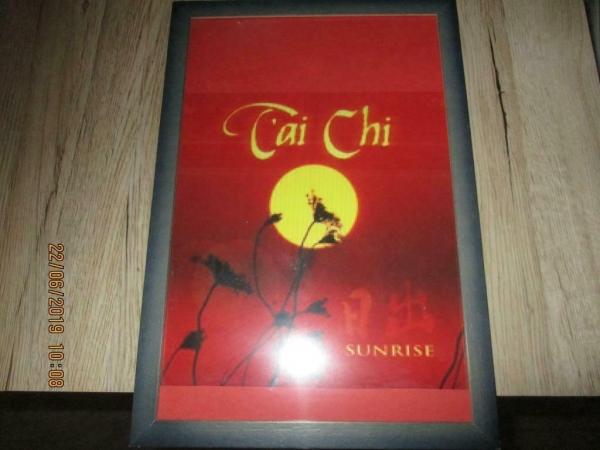 Schilderij Tai Chi uit het verre Oosten
