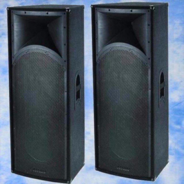 Professionele speakers 2x15 Inch 1600 Watt (124B)