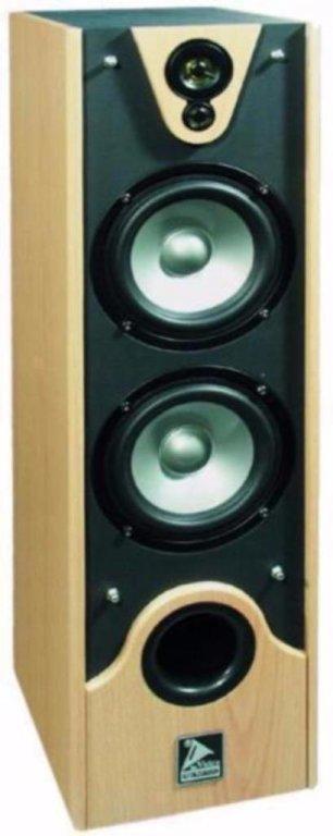 Speakers 2 x 180 Watt beuken houten kast op Spikes (017D)