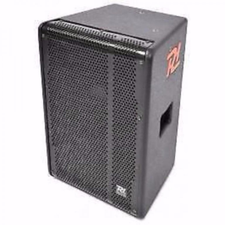 Power Dynamics PD-310 speakers 600 Watt (898-T)