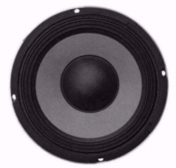 20 Cm Bass Speaker 200 Watt 8 Ohm (041-KJ)