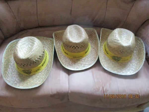 3 rieten cowboy hoeden van Walt disney park