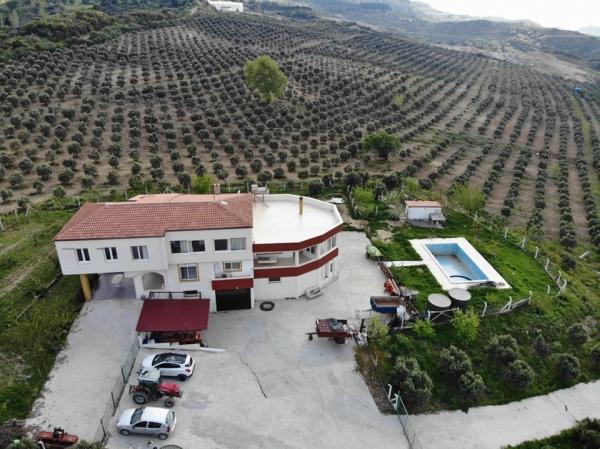 246 Duizen m2  Land met OLIVE FARM + Rens (Turkije).