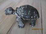 stenen Schildpad beeld voor in aquarium
