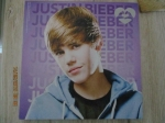 Justin Bieber schilderij 25 x 25