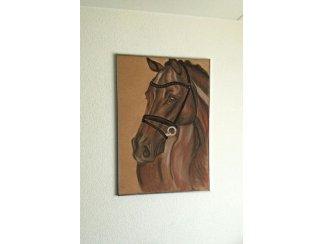 Tekening paard