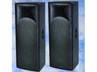 Professionele speakers 2x15 Inch 1600 Watt (124B)
