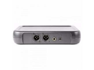 2-kanaals draadloze UHF hand microfoon set (206-T)